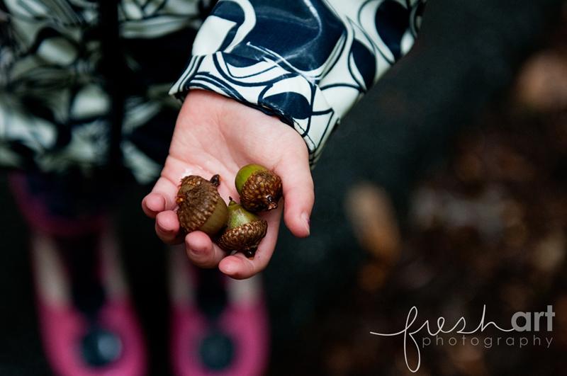 Parker acorns